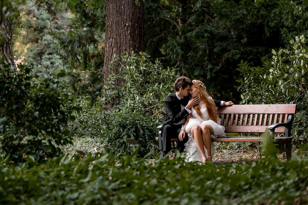 sesja zdjęciowa arboretum Wojsławice