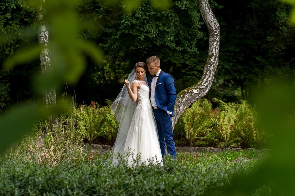 plener ślubny w ogrodzie botanicznym w Krakowie