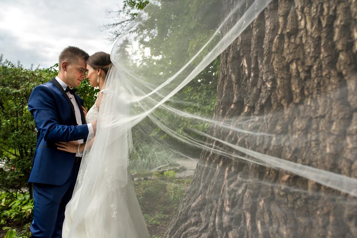 zdjęcia ślubne w ogrodzie botanicznym w krakowie