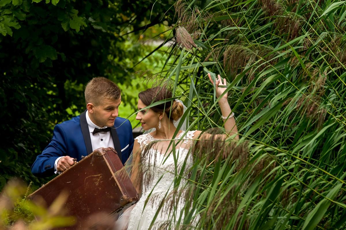 fotografia slubna krakow sesja ogrod botaniczny 112